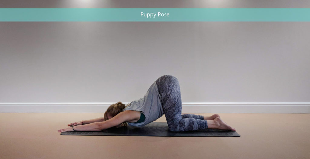 Puppy Pose - Yoga